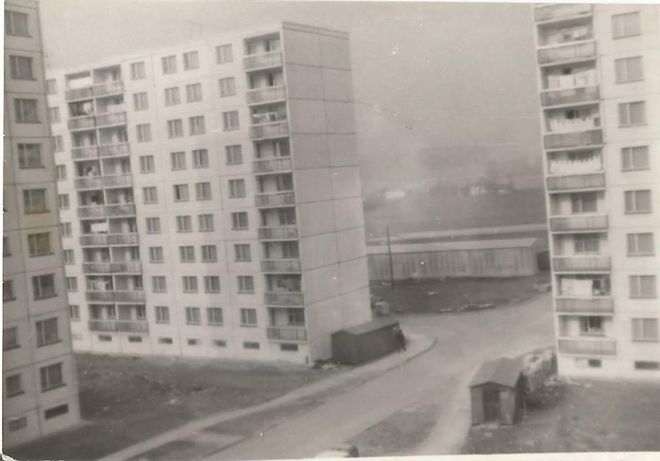 1984 - košúty