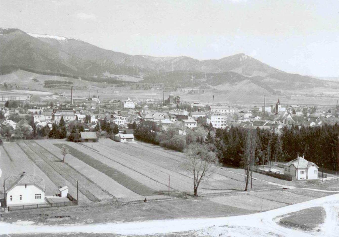 Pohľad na JV časť územia bez výraznejšej zástavby, 50te roky