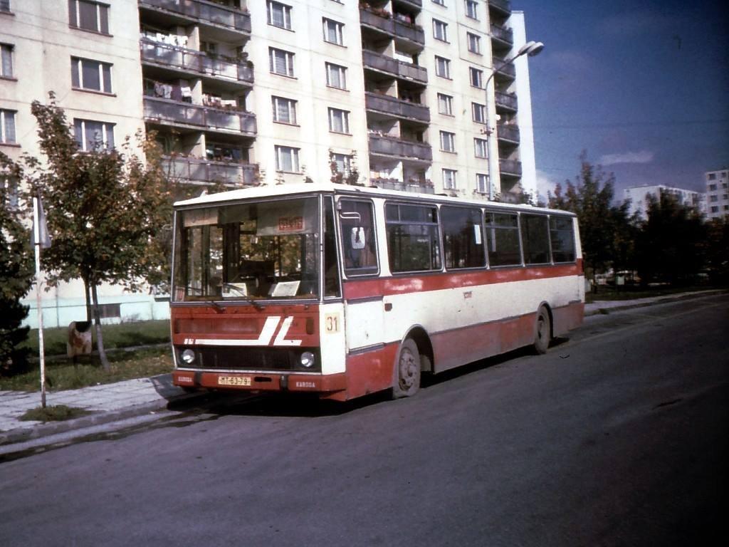 Ľadoveň, 1993