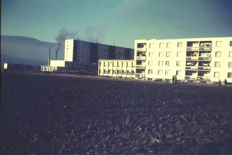 Ladoven 1979