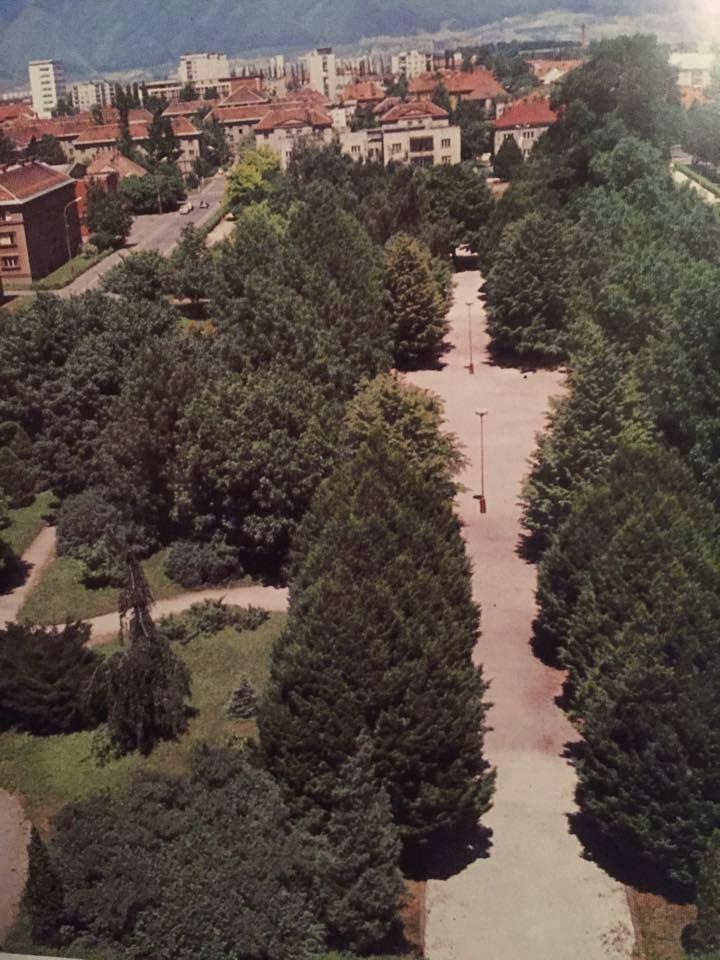 Park v Martine, 80te roky