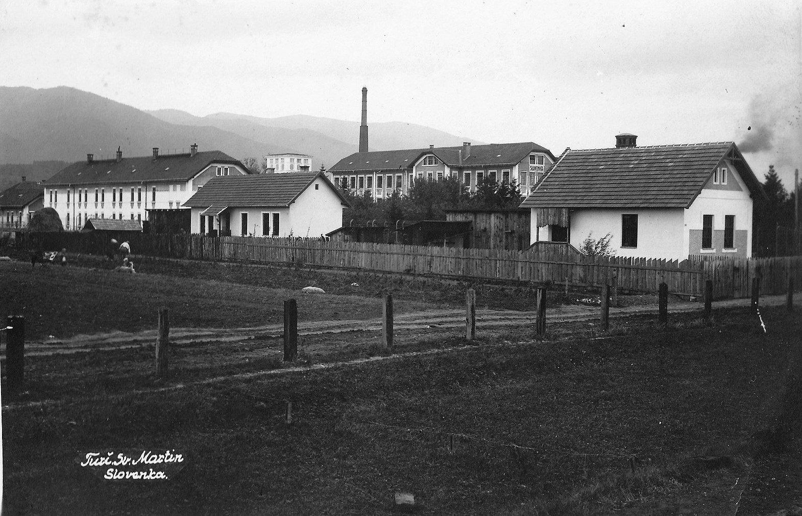 Slovenka, 50te roky