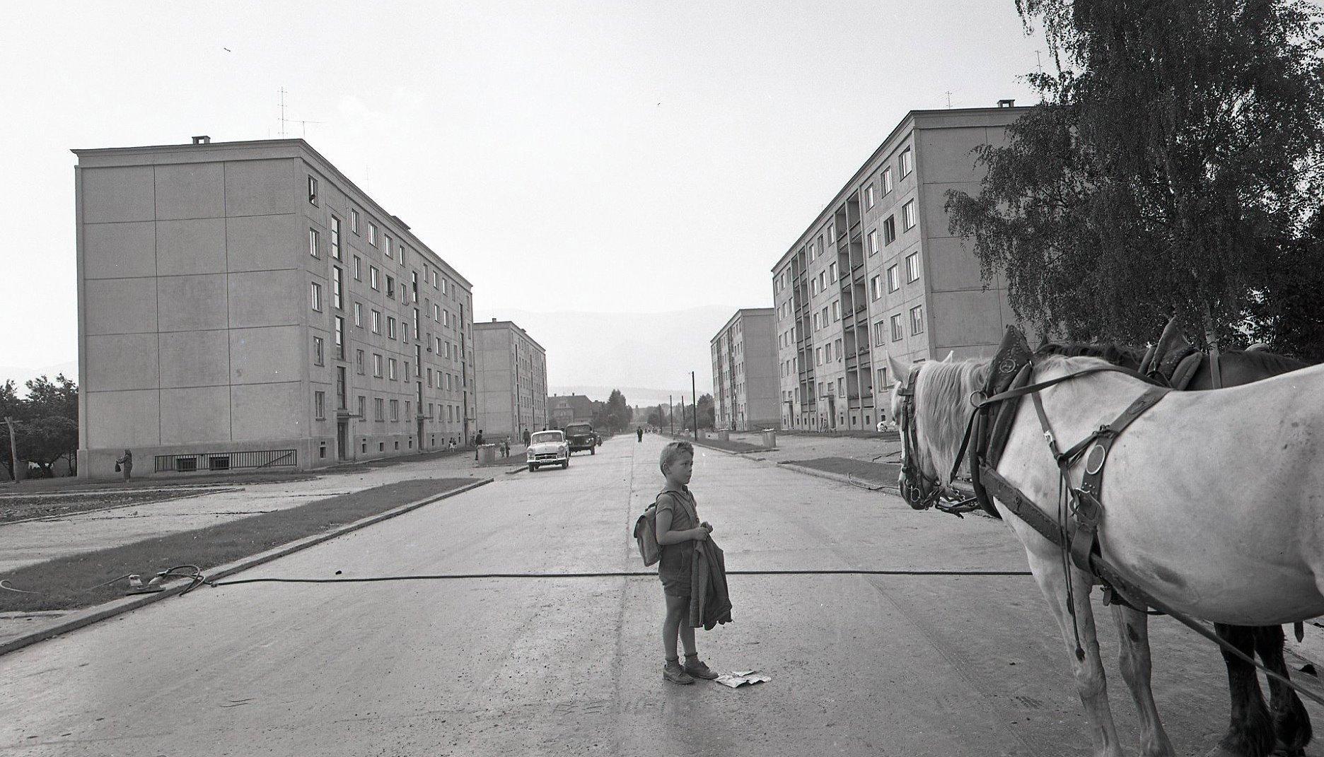 Thurzová, 1961